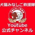 『NPO法人 犬猫みなしご救援隊公式チャンネル』のチャンネル登録よろしくお願いします。